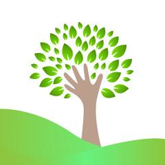 рука и листья