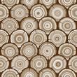tree rings seamless pattern - 77668586