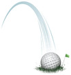 golf ball action - 77670188