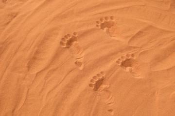 foot prints in the desert sand in summer