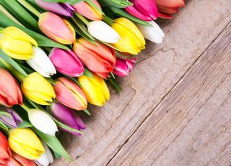 Tulpen mit Textfreiraum
