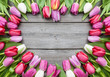 tulips arranged on old wooden background - 77674579