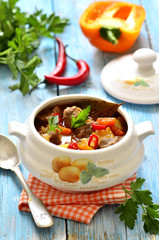 Traditional hungarian soup goulash.
