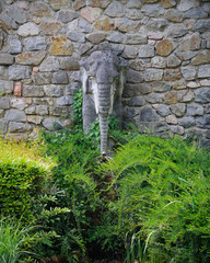 Elephant statue made from stone, Zoo park, Subotica, Serbia