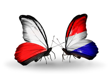 Two butterflies with flags Poland and Holland