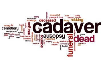 Cadaver word cloud