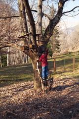 winter sunny day wildlife outdoor trip