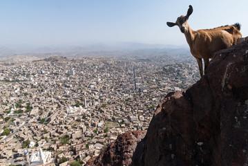 The city of Taizz in Yemen