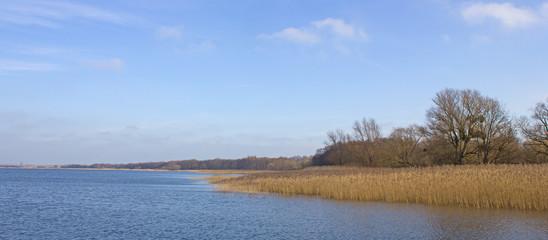 Uferzone am Kummerower See (Mecklenburg-Vorpommern)