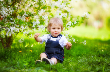 little boys spring portrait