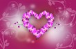 Orchid heart background