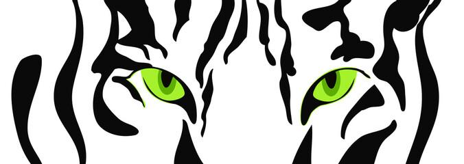 Tiger head close-up, illustration