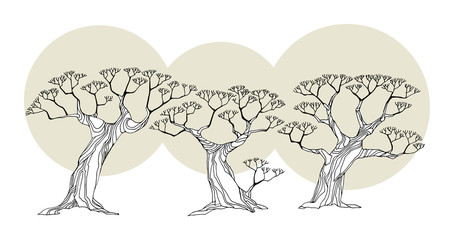 Trees, vector illustration