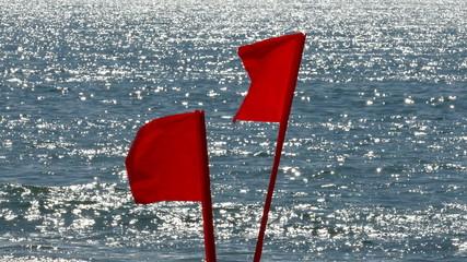 Beach Warning Flags Telephoto