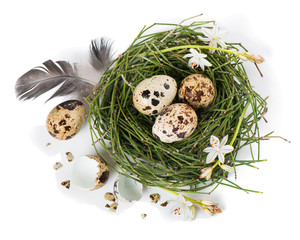 Easter egg nest, top view