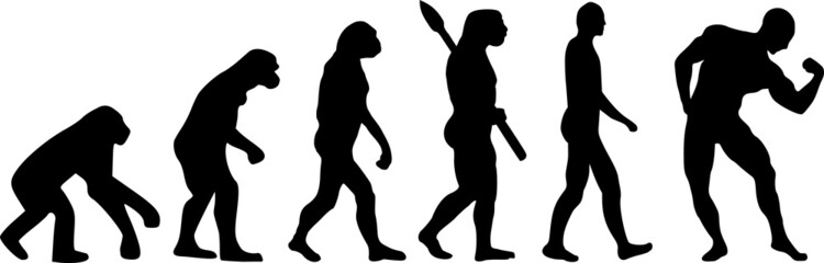 Evolution Muscle