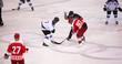 Eishockey Spiel - 77723962