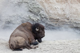 Bison Day Spa