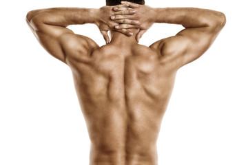 gesunder trainierter Rücken mit Muskeln