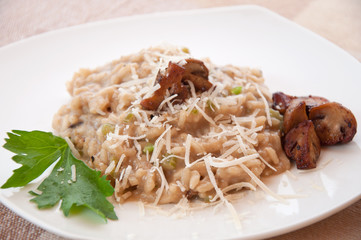 Delicious mushroom risotto served with cheese