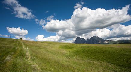 Trentino vacanze