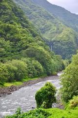 TAHITI  :  sentier des mille sources
