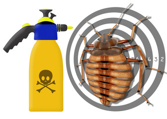 bedbug, cimex lectularius, spray