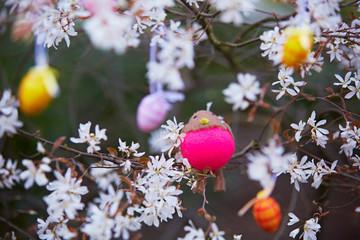 Pinkes Kueken in Kirschbaum
