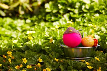 Pinkes Osterkueken
