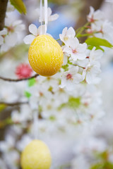 Ostereier in einem Kirschbaum
