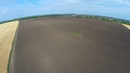 panorama of a wheat field