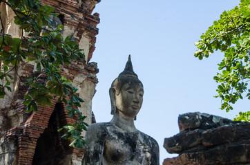 Statua di Buddha Wat Mahathat Ayutthaya Thailand