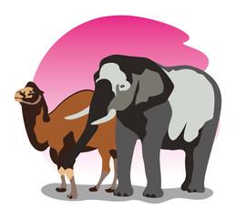 camel elephant sunset illustration