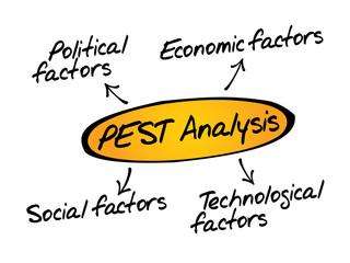 PEST Analysis flow chart, business concept