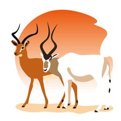 addax impala amtelope illustration