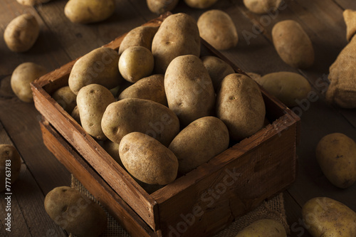 canvas print picture Organic Raw Brown Potatoes