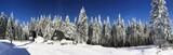 Winteridylle im Thüringer Wald - 77764362