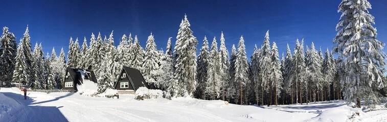 Winteridylle im Thüringer Wald