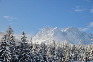 Alpine winter scene