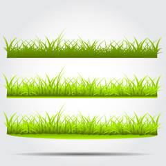 Three different styles of green grass on a white background