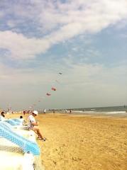 aquiloni in spiaggia