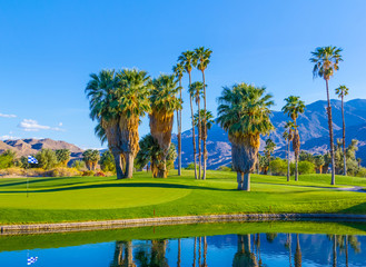 Spring at Palm Springs Golf course with pond,California,