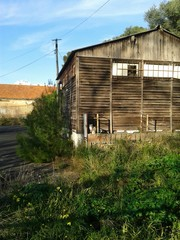 Old house whit cat