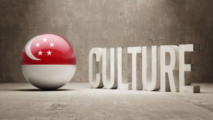 Singapore Culture  Concept