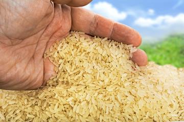 Basmati rice background