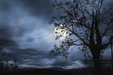 Beautiful Landscape with fullmoon