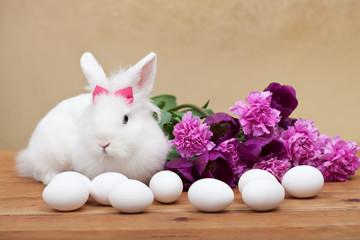 Spring simbols - white bunny waiting for easter