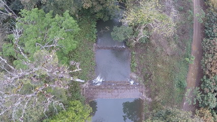 Aerial view over tree and the river
