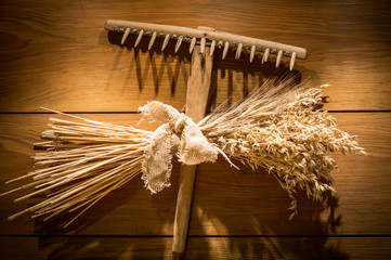 Farm tools:old wooden rake and bundle of wheat