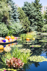 Colorful Balls in Blue Pond